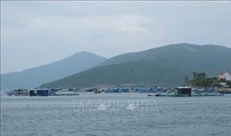 Đầu tư 260 tỷ đồng xây dựng đường giao thông đến cảng Vân Phong