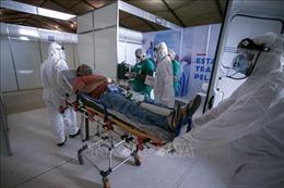 Thế giới ghi nhận trên 18 triệu ca mắc, 689.755 ca tử vong do COVID-19