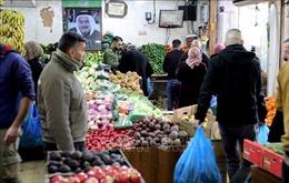 Chỉ số giá lương thực thế giới tăng trong tháng 7