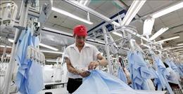 Một số điều chỉnh cơ cấu phù hợp có thể giúp Việt Nam trở thành nền kinh tế có hiệu suất cao