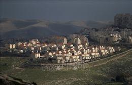 Tổng Thư ký Liên đoàn Arab nhận định lý do Israel ngừng sáp nhập Bờ Tây