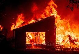 Cháy rừng tại bang California khiến hơn 48.500 người phải sơ tán