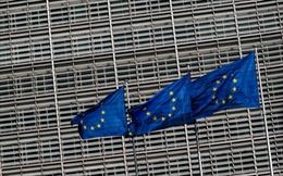 EU trừng phạt 3 công ty vi phạm lệnh cấm vận vũ khí với Libya