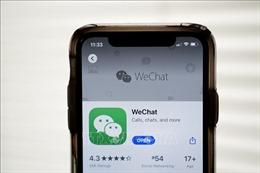 WeChat khó thu hút người dùng mới tại Mỹ