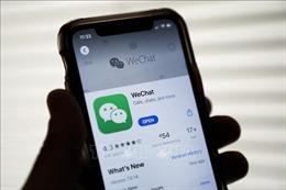 Chính quyền Tổng thống Donald Trump thúc đẩy lệnh cấm TikTok, WeChat tại Mỹ