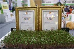 Hà Nội thêm điểm quảng bá sản phẩm OCOP và cửa hàng trái cây an toàn