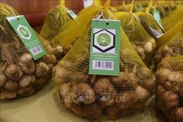 Sản phẩm tỏi An Thịnh (Bắc Ninh) được cấp chứng nhận chỉ dẫn địa lý
