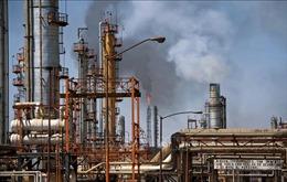 Giá dầu thế giới giảm ngay cả khi dự trữ dầu thô của Mỹ giảm