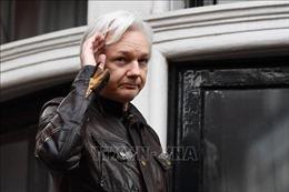 Tòa án Anh nối lại phiên xử về dẫn độ nhà sáng lập WikiLeaks sang Mỹ