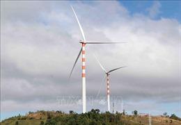 Đa dạng các nguồn cung năng lượng tái tạo