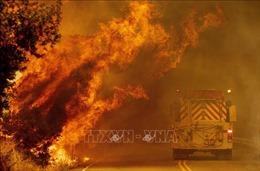Giải cứu trên 200 người mắc kẹt do cháy rừng ở California