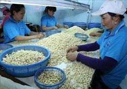 Thúc đẩy nhập khẩu nông sản từ Hoa Kỳ