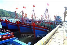Nghệ An kêu gọi tàu thuyền tránh khu vực nguy hiểm do bãosố 7