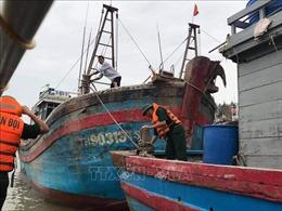 Ứng phó với bão số 7, Thanh Hóa kêu gọi 6.745 phương tiện tránh trú bão an toàn