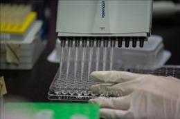 Tập đoàn Daewoong được cấp phép thử nghiệm thuốc điều trị COVID-19