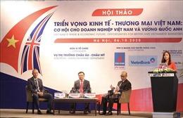 Triển vọng quan hệ thương mại-đầu tư giữa Việt Nam và Vương quốc Anh