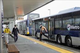 New Zealand dỡ bỏ các biện pháp hạn chế tại Auckland
