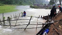 Phục hồi sản xuất, đảm bảo lương thực cho người dân miền Trung sau mưa lũ