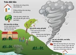 Chủ động phòng tránh lốc xoáy và gió giật