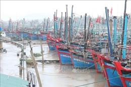 Các tỉnh, thành ven biển Nghệ An - Bình Thuận chủ động ứng phó với áp thấp nhiệt đới