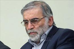 LHQ hối thúc kiềm chế sau vụ ám sát nhà khoa học hạt nhân Iran