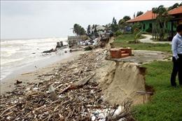 Nghiên cứu, đề xuất giải pháp căn cơ bảo vệ bờ biển Hội An