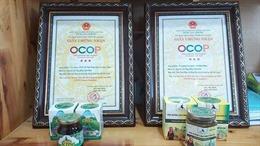 Chương trình OCOP góp phần tạo nên chuỗi giá trị sản phẩm nông nghiệp