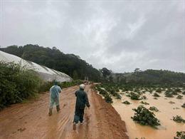 Tiếp tục mở rộng tìm kiếm hai du khách bị lũ cuốn mất tích tại Lâm Đồng