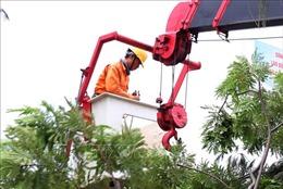 Ninh Thuận chủ động đảm bảo an toàn lưới điện để ứng phó với 'bão chồng bão'