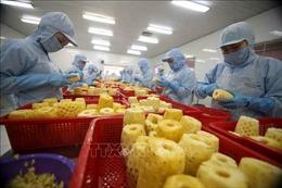 Nông sản Việt rộng đường sang Vương quốc Anh nhờ UKVFTA