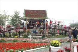 Khai mạc lễ hội tại vùng trồng hoa lớn nhất miền Bắc
