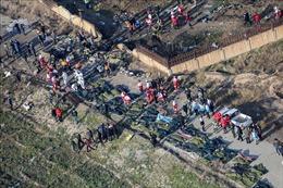 Boeing 737 của Ukraine rơi tại Iran là do lỗi động cơ