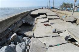 Khẩn trương khắc phục hư hỏng tuyến đê biển Đông Hải - Phú Thọ