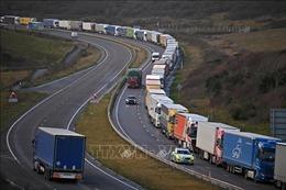 Chuỗi cung ứng hàng hóa cho Bắc Ireland có thể sụp đổ trong vài ngày tới