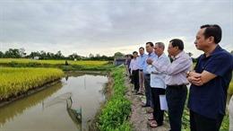 Chủ động phòng, chống hạn hán, xâm nhập mặn mùa khô 2020 - 2021
