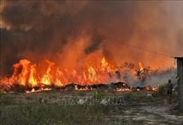 Cháy rừng tại Chile, trên 25.000 người phải sơ tán