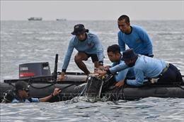 Thủ tướng gửi điện chia buồn tới Tổng thống Indonesia Joko Widodo