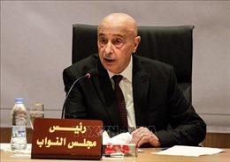Libya cần thành lập chính phủ mang tính đại diện cao