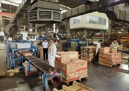 Khí thế sản xuất đầu Xuân tại các khu, cụm công nghiệp ở Phú Thọ