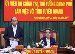 Thủ tướng: Tuyên Quang phải trở thành trọng điểm của ngành chế biến gỗ