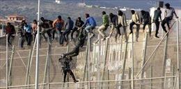 Cảnh sát Tây Ban Nha bắt 8 đối tượng tình nghi đưa người di cư bất hợp pháp
