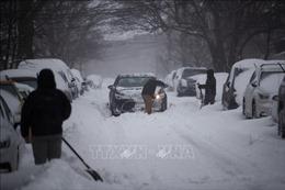 Hàng chục người thiệt mạng vì bão, tuyết rơi dày đặc tại Mỹ, Hy Lạp