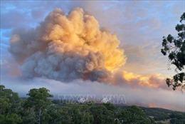 Thành phố Perth, Australia nỗ lực kiểm soát cháy rừng