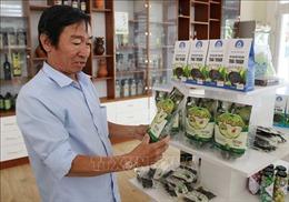 Phát triển sản phẩm chế biến từ quả táo Ninh Thuận