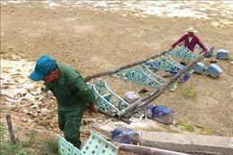 Nuôi trồng thủy sản vụ mới ở Quảng Trị nhiều khó khăn