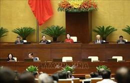 Thông cáo báo chí số 03, Kỳ họp thứ 11, Quốc hội khóa XIV