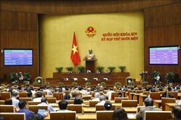 Trình Quốc hội phê chuẩn việc bổ nhiệm một số Phó Thủ tướng và một số Bộ trưởng