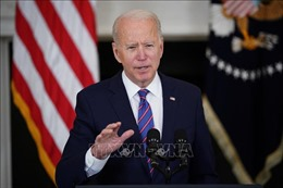 Bang Florida kiện chính quyền Tổng thống J.Biden liên quan lệnh cấm kinh doanh du thuyền