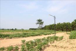 Quảng Trị: Phân lô bán đất nền ngay ở vùng… nguy cơ sạt lở cao