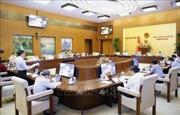 Tiếp tục Phiên họp thứ 56 của Ủy ban Thường vụ Quốc hội